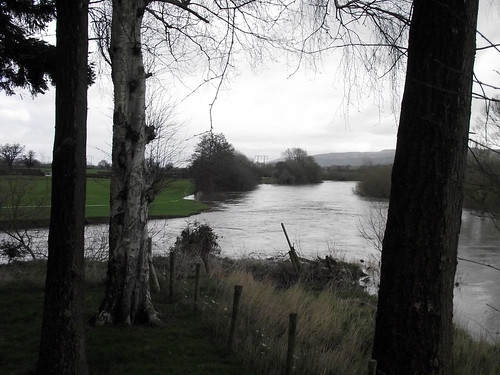 Confluence of the Rhiw and the Severn, Glansevern, Powys