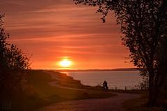 am Brodtener Steilufer (LB-fotos) Tags: ocean sunset sun beach silhouette strand germany deutschland coast meer sonnenuntergang balticsea ba sonne ostsee fahrrad steilküste küste ostholstein 70d brodtenersteilufer