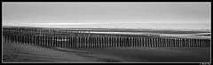 sangatte_03 (Les photos de Laurent) Tags: wood sea mer france beach mar madera sand nikon north sable wave playa arena cap cape 1855mm vague plage ola nord bois norte capote pasdecalais sangatte d3200
