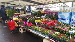 Paris Avril 2016 - 06 le marché de l'Avenue du Président Wilson (paspog) Tags: paris france spring market april markt avril marché printemps frühling 2016 avenueduprésidentwilson