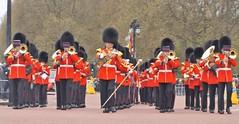 band of the welsh guards /22/04/2016/ (philipbisset275) Tags: unitedkingdom themall centrallondon cityofwestminster englandgreatbritain bandofthewelshguards 22042016
