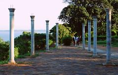 Jardim dos namorados. (CatastroF) Tags: africa travel blue friendship amizade azzurro viaggi amicizia amistad mozambique maputo moambique mozambico almosthome viaggiare andare viajosola nossaterragloriosa