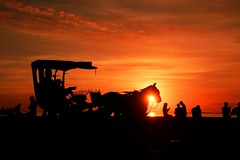 The ride back home. (yelphotography) Tags: sunset people horse silhouette clouds landscape flickr philippines explore manila kalesa horseride flickrtoday sunchaser
