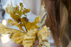 17:52 (phixated) Tags: autumn summer portrait colour macro art fall me girl field self project hair photography photo student nikon warm photographer dof skin weeks depth 52 52weeks 52weeksproject phixation 52weeksofphotography phixated 52weeks2016