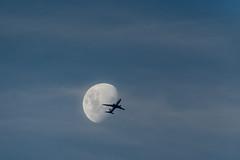 single-frame (Luke KC) Tags: moon brisbane moment decisive flightpath rightplacerighttime quantas aligned