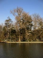 Cluj-Napoca - Central Park (Bogdan Pop 7) Tags: park lake central lac romania transylvania parc transilvania kolozsvar cluj clujnapoca roumanie 2016 erdly parcul erdely kolozsvr ardeal romnia klausenburg parculsimionbarnutiu