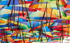 Vrolijke boel (Bart Weerdenburg) Tags: color art regenboog umbrella rainbow colorful colours kunst romania bucharest paraplu kleurrijk kleur kleuren boekarest roemenie