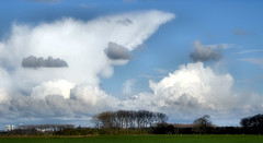 Those wonderful clouds... (Blue Planet1) Tags: trees sky field clouds poetic