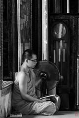 Nirvana littraire (Ye-Zu) Tags: voyage trip temple shrine bangkok monk thailande worldtour moine tourdumonde bouddism