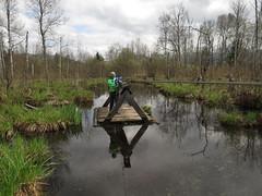 Playing Huckleberry Finn (aniko e) Tags: nature kids germany spring swamp raft moor bog moos wetland huckleberryfinn benediktbeuern moosrundweg