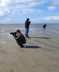 Shooters at Mandø (Jaedde & Sis) Tags: vadehavet shooter three beach mandø tide wadden sea phone challengefactorywinner thechallengefactory thumbsup challengeyouwinner cyunanimous mpt532 matchpointwinner 15challengeswinner gamewinner agcgwinner