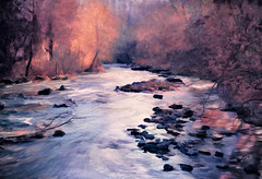 Cold Afternoon at the River (Terry Pellmar) Tags: trees winter texture river afternoon digitalart digitalpainting ellicottcity bestcapturesaoi elitegalleryaoi