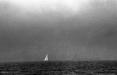 Sailboat and Ship In Fog Penobscot Bay 8-26-1988mrf (ironmike9) Tags: ocean sea water fog sailboat bay coast boat seaside ship maine vessel atlantic sail schooner seacoast mv penobscotbay motorvessel roseway