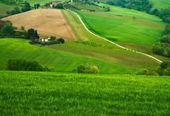 _DSC5280 (Giuseppe Cocchieri) Tags: color verde green primavera landscape countryside spring colore campagna colori paesaggio vallata allaperto