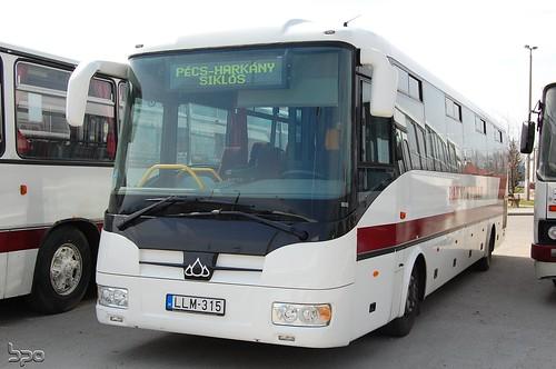 LLM-315