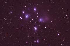 M45 Pleiades (powellm77) Tags: sky apt photoshop canon 50mm ds deep mount cc astrophotography m45 pro modified phd pleiades lightroom stacker eq5 skywatcher 450d 80ed astrometrydotnet:status=solved guidescope qhy5lii astrometrydotnet:id=nova1387699