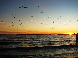 Atardecer en el pacifico,Puerto Montt,Chile