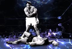 AL : The King (IAN RANSLEY DESIGN + ILLUSTRATION) Tags: ali greatest punch boxing muhammadali
