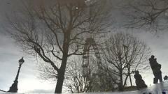 window (Giramund) Tags: trees reflection london eye puddle southbank