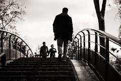 Summit Meeting (gblancan) Tags: street bridge urban blackandwhite bw man paris stairs blackwhite noir noiretblanc streetphotography pic nb pont streetphoto rue blanc escalier paris12 photoderue jardindebercy photorue