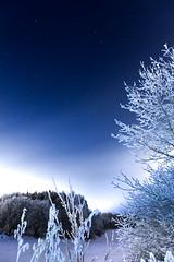 Icy night (mpakarlsson) Tags: longexposure winter snow tree ice nature night forest canon stars star frost sweden 24105 skaraborg falkping