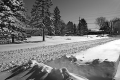 Day After Storm Jonas 12 - Street View 2 (George - with over 2 mil views - THANKS) Tags: winter usa snow monochrome us blackwhite newjersey unitedstatesofamerica snowstorm january mercercounty ewing winterscene acdseepro suburbanscene photogeorge nikond750