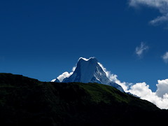 In the Annapurnas (Py All) Tags: nepal mountain snow nature montagne trekking trek landscape outside asia outdoor asie neige himalaya paysage pokhara extrieur annapurna randonne poonhill ghorepani