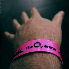 Standing (peterphotographic) Tags: uk pink england macro london closeup canon square hand arm britain tag pass o2 ticket tags fluorescent e17 luminous walthamstow eastlondon thelibertines g15 o2arena macromondays camerabag2 peterhall img6335sqcb2parisedwm
