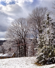Overlooking (RansomedNBlood) Tags: trees snow landscape wv westvirginia dunbar overlooking iphoneography iphone5s