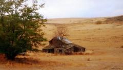 Not-so-prosperous prairie barn (edenseekr) Tags: barn farmland prairie photopainting digitallypainted eastermwa