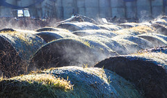 Frosty morning (alh1) Tags: york england steam bales footpath northyorkshire haxby
