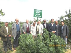 Happy farmers_Nubaria area 2 (ICARDA-Science for Better Livelihoods in Dry Areas) Tags: farmers northafrica climatechange mena pulses ifad nutrition resilience drylands icarda incomes westasia croprotation seedsystems conservationagriculture euifad wheatlegumecroppingsystems