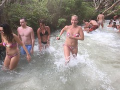Drop Bear Adventures (Drop Bear Adventures Fraser Island) Tags: camping nature island driving australia 4wd adventure fraser tours dropbear