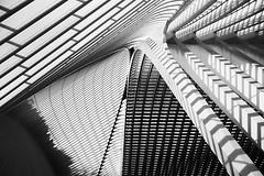 Shadows and Lines / (jo.misere) Tags: bw lines shadows sony structures calatrava alpha tamron schaduw liege 77 bows luik bogen zw lijnen strukturen 1750mm