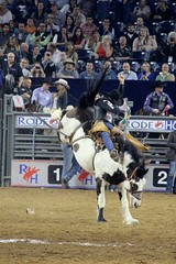 IMG_9998 (Heather6577) Tags: fun cowboy texas houston rodeo houstonlivestockshowandrodeo 2016 nrgstadium