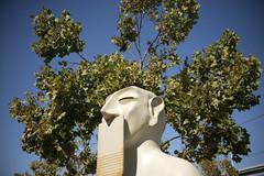 Our silences (Maarten Roggeman) Tags: california from our san francisco silences rivelino