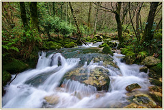 A Fraga (f@gra) Tags: rio forest river landscape spain agua sony silk paisaje galicia bosque seda pontevedra fraga efectoseda