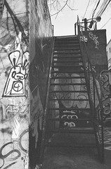 Poser Bunny (Georgie_grrl) Tags: streetart toronto ontario stairs graffiti poser alley pentaxk1000 tagging graffitialley ilford400asa rikenon12828mm