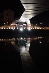 bajo vientre de un lagarto gigante (Towner Images) Tags: bridge night river puente spain footbridge bilbao lizard basque lagarto euskadi vientre underbelly towner pedroarrupe townerimages