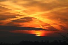 Sunrise (15 Mar 2016) #3 (Shaun Grist) Tags: sky sun sunrise cwmbran