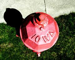 Iowa import (Mark.Swanson) Tags: hydrant firehydrant eddy fireplug clowvalve