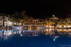 Parque Santiago III (Fjola Dogg) Tags: park vacation holiday water pool canon island hotel spain europe nightshot palm palmtrees tenerife nightsky evropa sundlaug nightimage gisting parquesantiago3 evrpa plmatr canonpowershotg7x canong7x