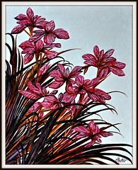 Lila-Orchideen (LOMO56) Tags: modernart kunst modernekunst zeichnungen gemälde ölgemälde acrylgemälde