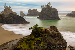 Secret Beach Seastacks (Lidija Kamansky) Tags: trees sky green beach nature water clouds oregon landscape outdoors coast moss sand rocks secretbeach coastal pacificnorthwest coastline oregoncoast scenics seastack seastacks rockformation beautyinnature wildriverscoast lidijakamansky