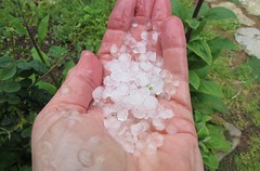 Hail (jinxmcc) Tags: weather northerncalifornia hail welcome precipitation mendocinocoast lateapril