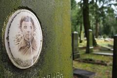 Soviet Cemetery in Potsdam (3) (Lens Daemmi) Tags: friedhof cemetery grave stone germany deutschland military soviet grabstein potsdam brandenburg soldaten militr 2016 russischer sowjetischer michendorferchaussee