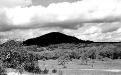 mpix 45 040116 EOS ELAN 7n 50mm Kodak BW400CN 040516 009e ~ Latigo Ranch (BDC Photography) Tags: usa film blackwhite texas 35mmfilm wilderness texashillcountry canoneoselan7n pipecreek abigfave canoneos30v canonef50mmf14usmlens banderacounty kodakprofessionalbw400cnfilm latigoranch canonslrfilmcamera cloudsstormssunsetssunrises bwfp epsonperfectionv600photoscanner bwfpro58mm010uvhaze1xmrcfilter bwfpro58mm0222xmrcyellowfilter