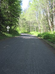 Elk Prairie Road is maintained by the county, but doesn't see much (non-logging) traffic (Tysasi) Tags: permanent dnf brevet 160k sawtell200k