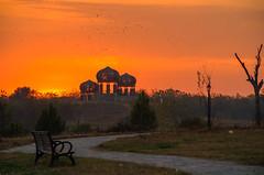 let's fly away.. (haziq ali) Tags: pakistan sunset nature landscape golden evening nikon dusk hour goldenhour islamabad naturephotography f9park pakistaniphotographer nikonphotographer d7000