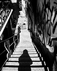 """Shape"" (giannipaoloziliani) Tags: street city shadow urban blackandwhite italy streetart muro scale monochrome wall bar monocromo flickr downtown neon italia view liguria details ombra banner steps perspective citylife streetphotography murals genoa genova vista scala streetphoto urbano dettagli written shape longview murales altezza myshadow height insegna biancoenero prospettiva gradini urbanstreet sagoma monocromatico genoacity streetdetails myshape giannipaoloziliani"